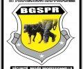 BGSPR CI