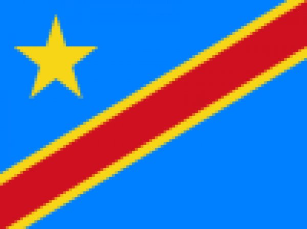 AMBASSADE DE LA REPUBLIQUE DEMOCRATIQUE DU CONGO