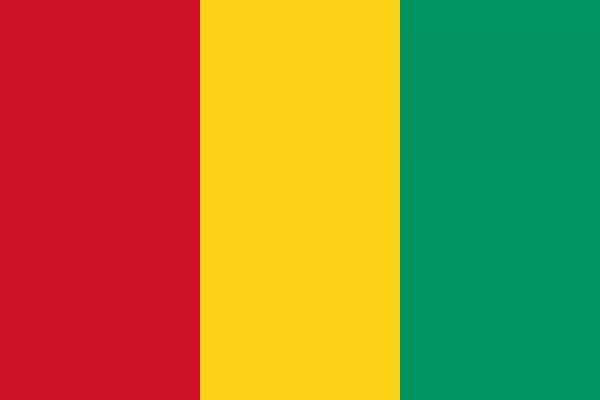 AMBASSADE DE GUINEE