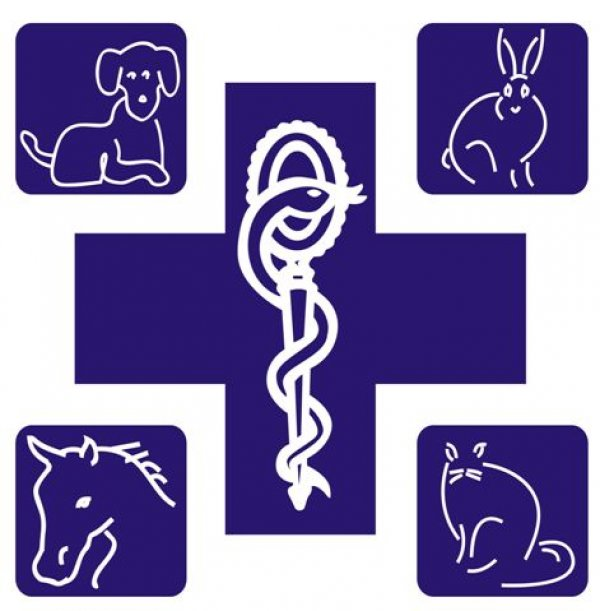 Clinique Veterinaire C. Bourgelat
