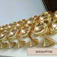 Eucalyptus Articles De Decoration